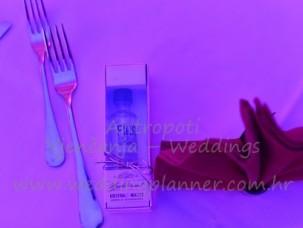 antropoti-vip-club-concierge-service-weddings-croatia-ideas-gifts1